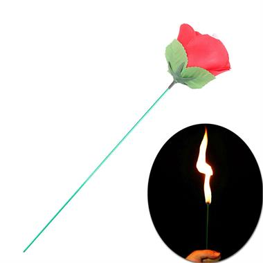 Appearing Fire To Rose Flower
